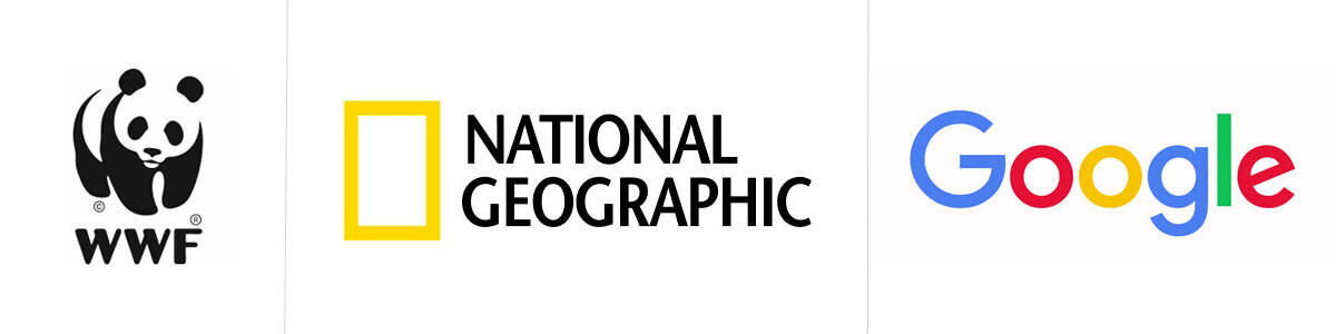 Esempi Loghi WWF, National Geographic e Google